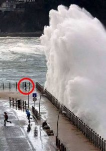 perfectly-timed-pics (28)