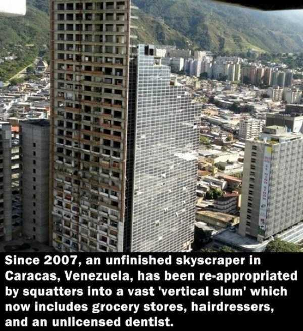 random-cool-facts (4)
