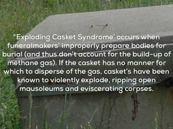 shocking-facts (10)