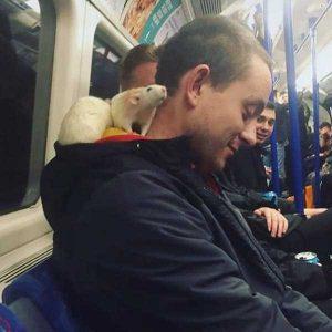 strange-subway-people (31)