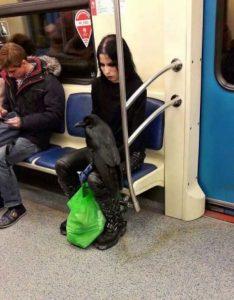 strange-subway-people (8)