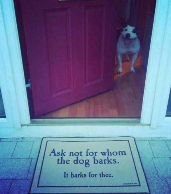 awesome-funny-doormats (1)
