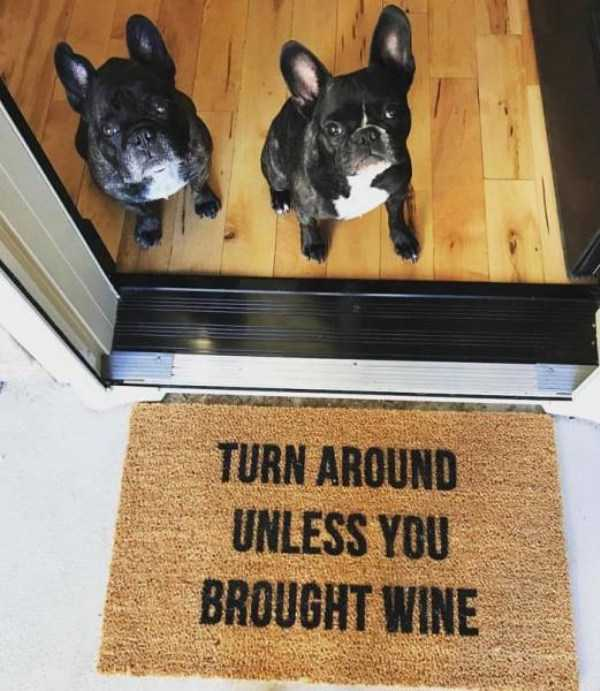 awesome-funny-doormats (11)