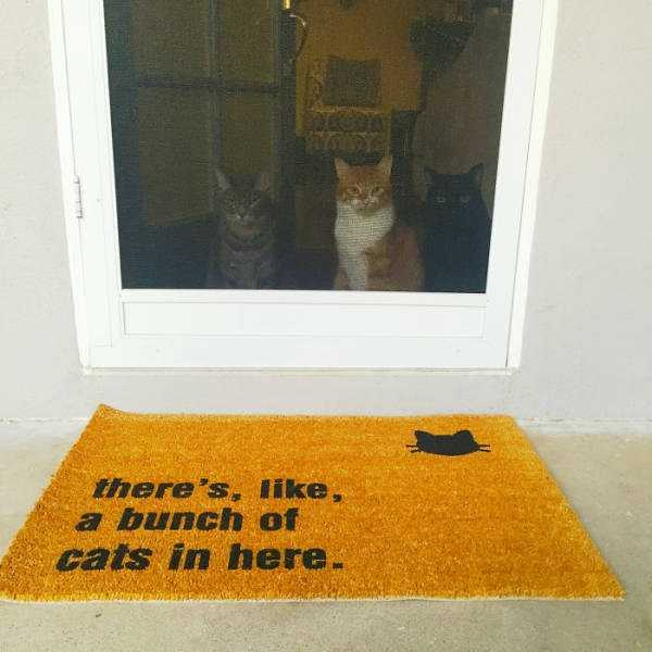 awesome-funny-doormats (19)