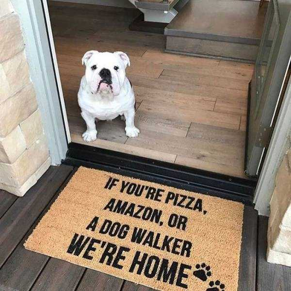 awesome-funny-doormats (9)