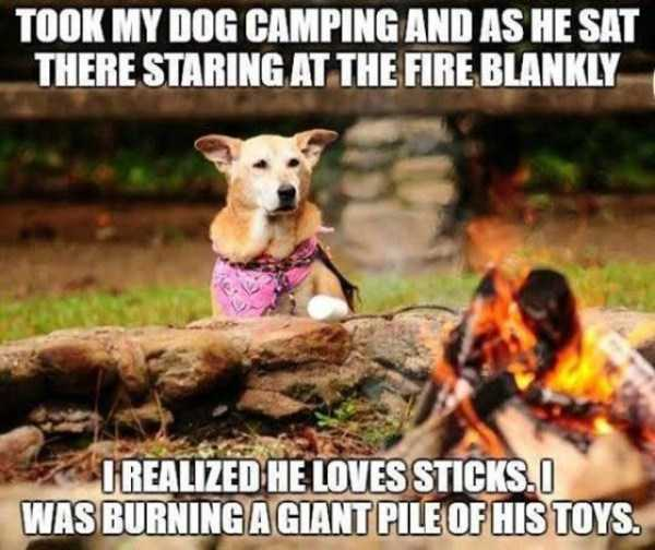 funny-camping-fails (16)