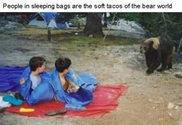 funny-camping-fails (5)