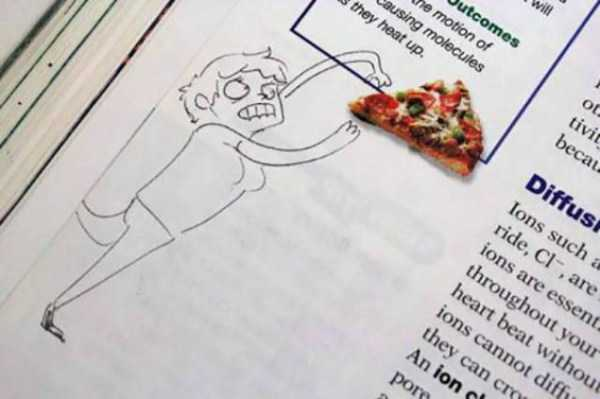 funny-textbook-drawings (19)
