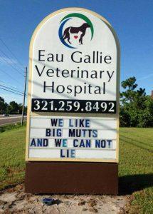 funny-vet-signs (13)