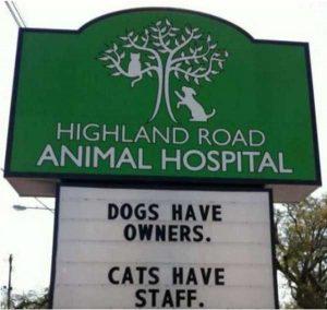 funny-vet-signs (14)