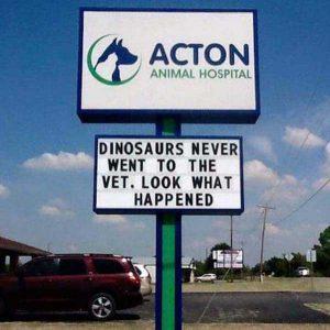 funny-vet-signs (15)