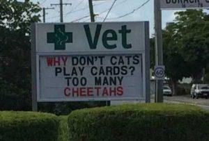 funny-vet-signs (4)