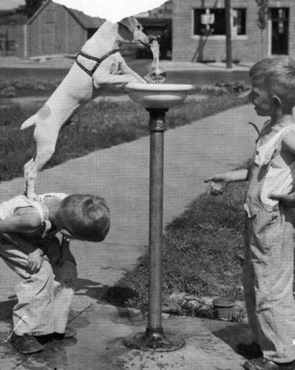 kids-playing-retro-photos (15)