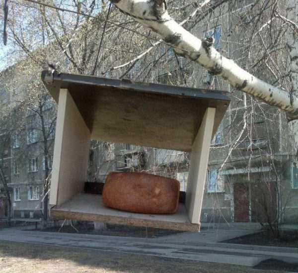 russia-wtf-pics (11)