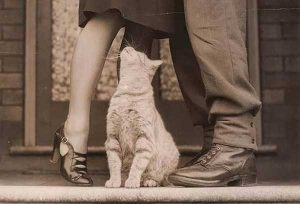 vintage-photos-taken-at-the-right-moment (3)