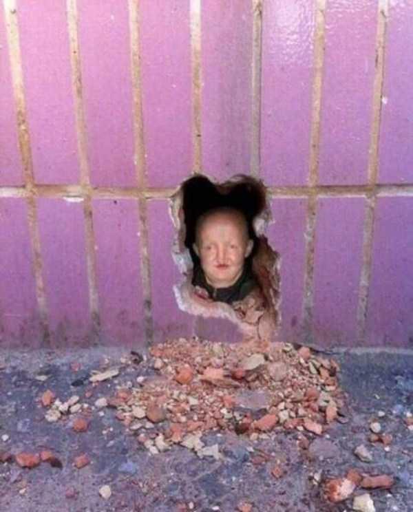 weird-internet-pics (42)