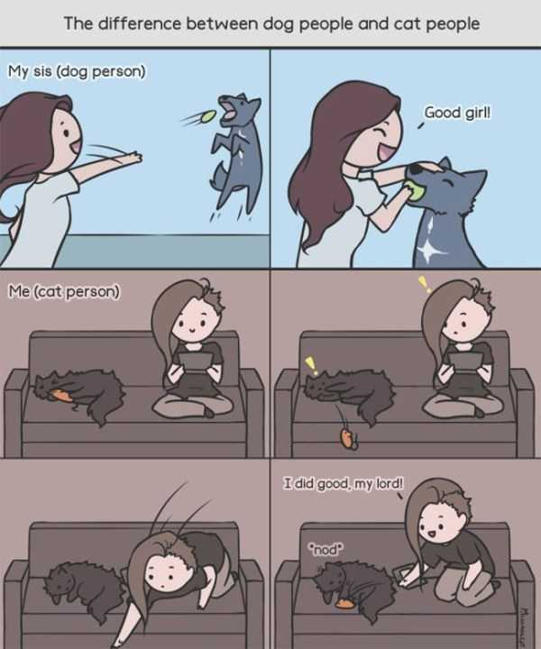 cats-dogs-differences (12)