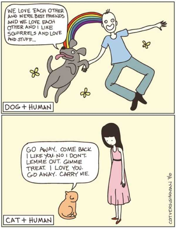 cats-dogs-differences (13)