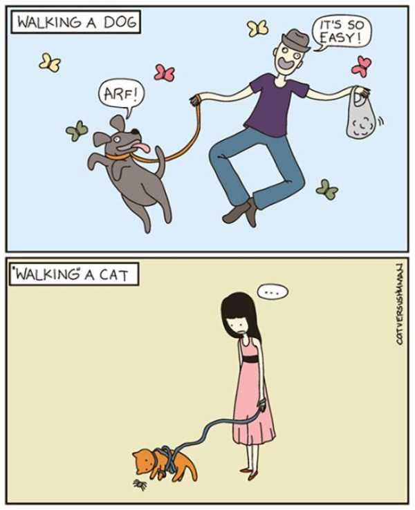 cats-dogs-differences (14)