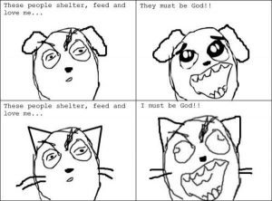 cats-dogs-differences (2)