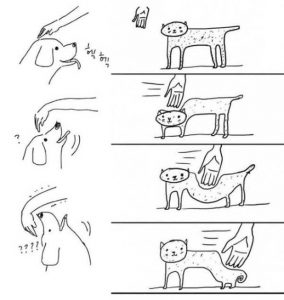 cats-dogs-differences (4)