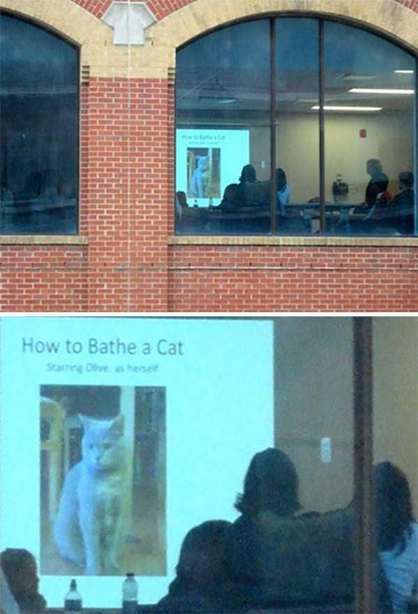 cool-presentations (22)