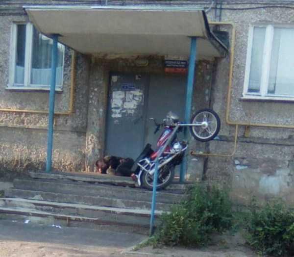 funny-crazy-russia-pics (2)