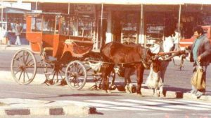 daily-life-in-turkey-1982 (16)