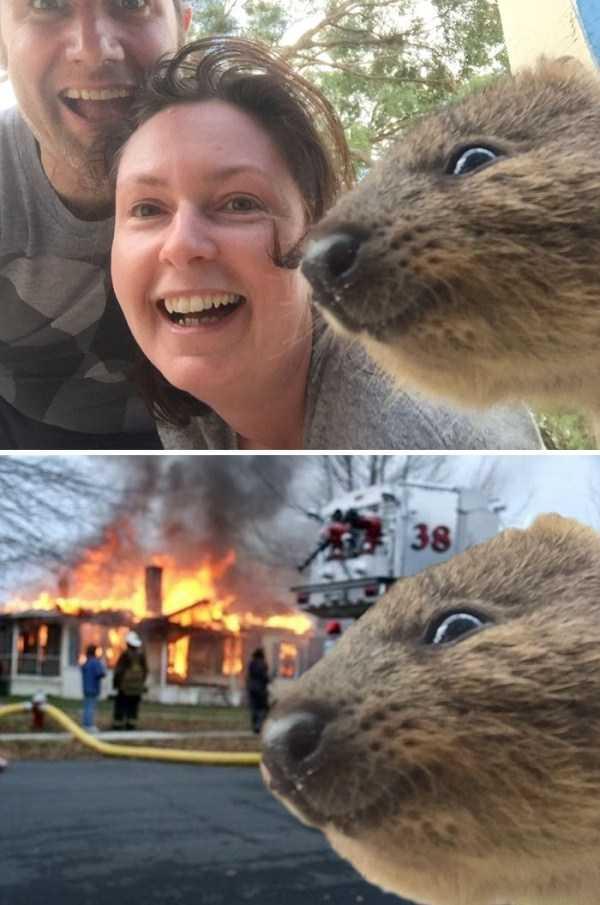 hilarious-photoshops (16)