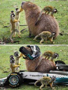hilarious-photoshops (18)