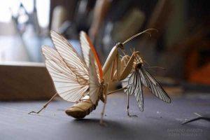 noriyuki-saitoh-bamboo-insects (1)