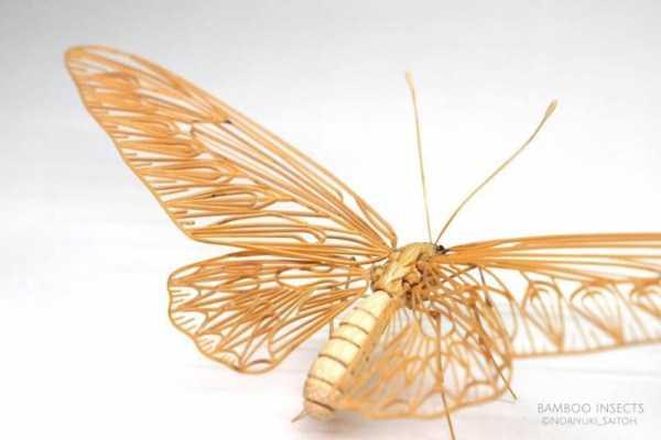 noriyuki-saitoh-bamboo-insects (10)