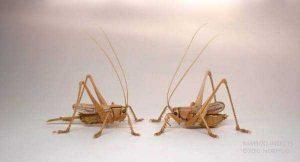noriyuki-saitoh-bamboo-insects (12)