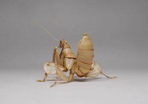 noriyuki-saitoh-bamboo-insects-16