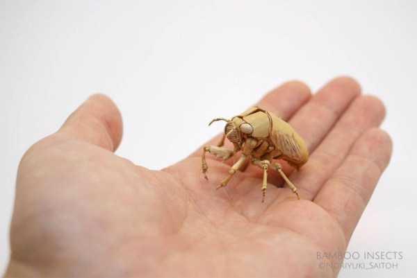 noriyuki-saitoh-bamboo-insects (3)