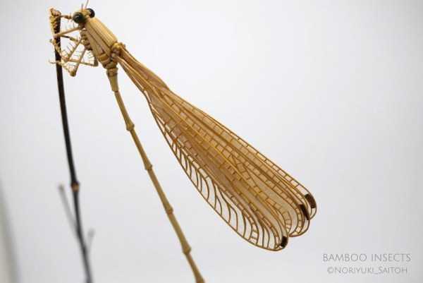 noriyuki-saitoh-bamboo-insects (6)