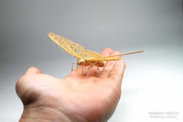 noriyuki-saitoh-bamboo-insects (9)