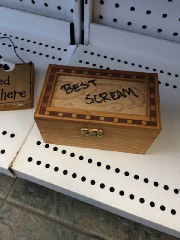odd-items-in-thrift-stores (33)