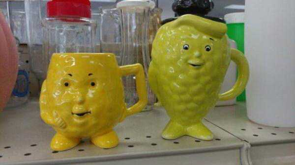 odd-items-in-thrift-stores (6)