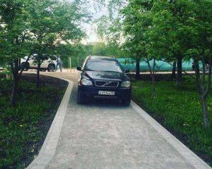parking-like-a-jerk (18)