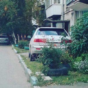 parking-like-a-jerk (3)