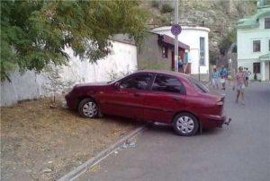 parking-like-a-jerk (45)