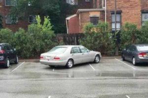parking-like-a-jerk (48)