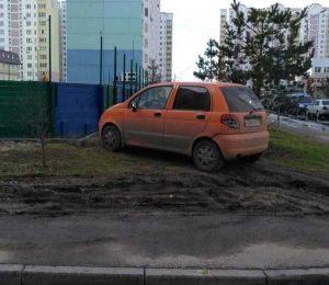 parking-like-a-jerk (5)