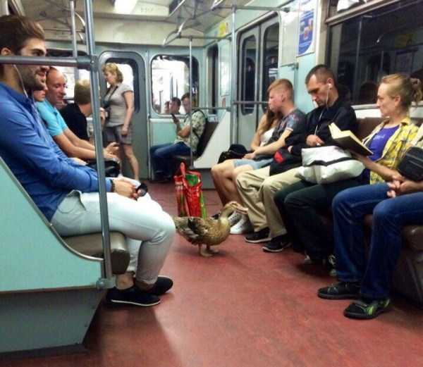 russian-subway-weird-fashion (17)
