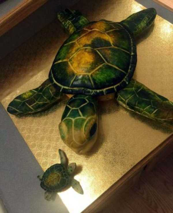 stunning-creative-cakes (22)