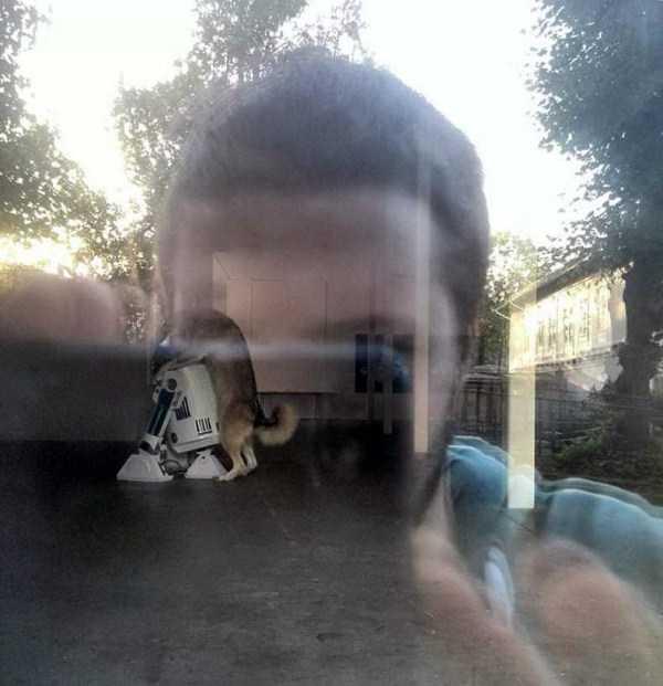wtf-strange-photos (32)