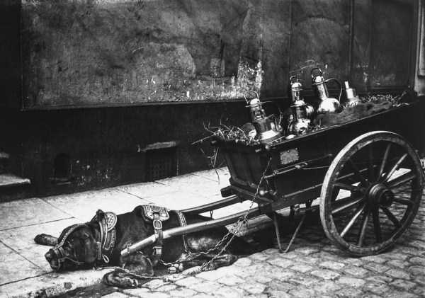 amsterdam-100-years-ago (24)