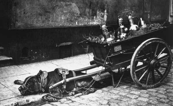amsterdam-100-years-ago-(29)