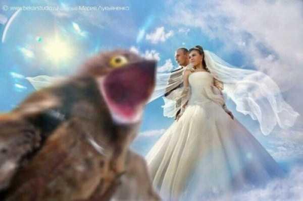 bad-russian-wedding-pics (27)